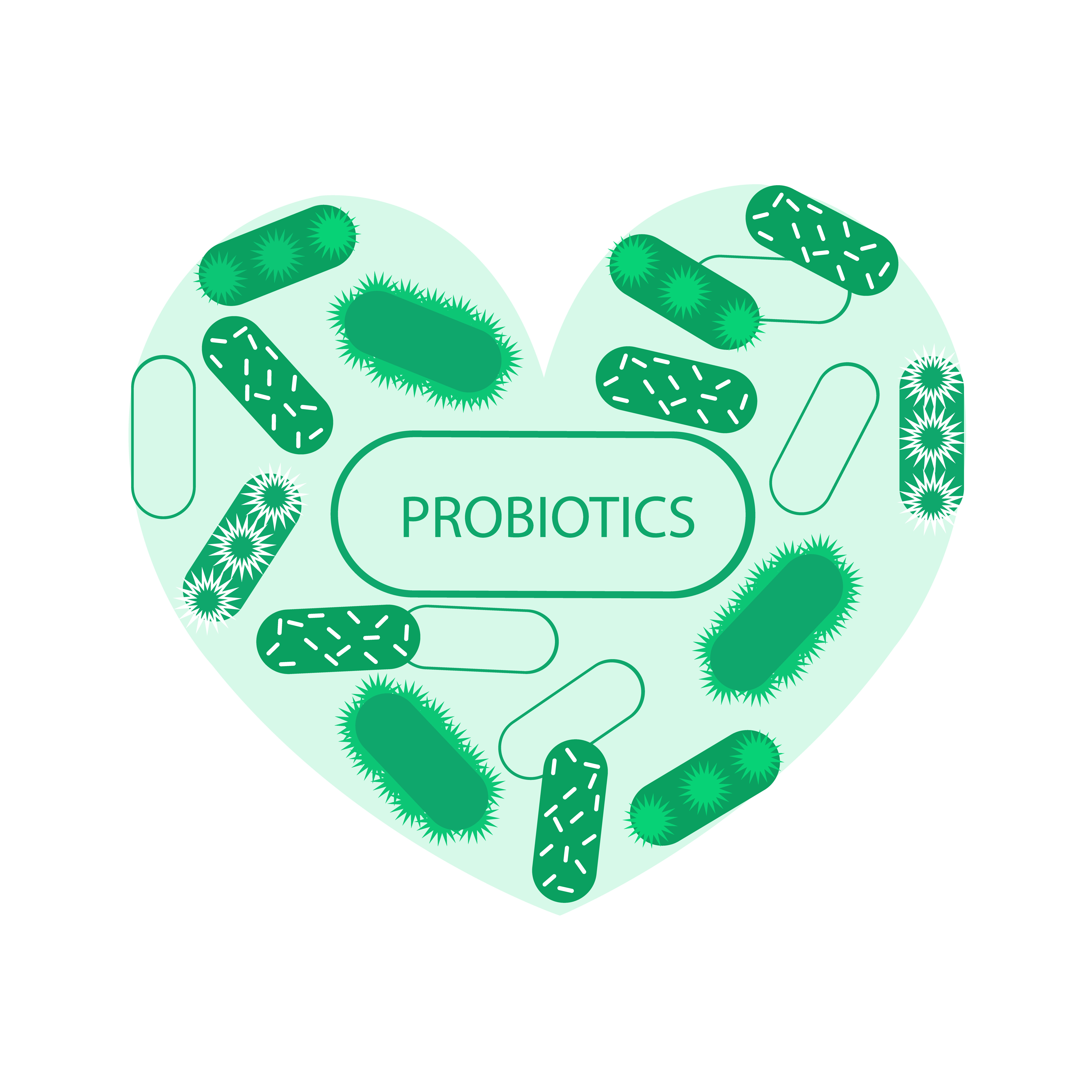 Made of Probiotic symbol heart and symbolic medical illustration of the intestinal bacterial flora
